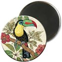 MAGNETS ROND AMYS TOUCAN