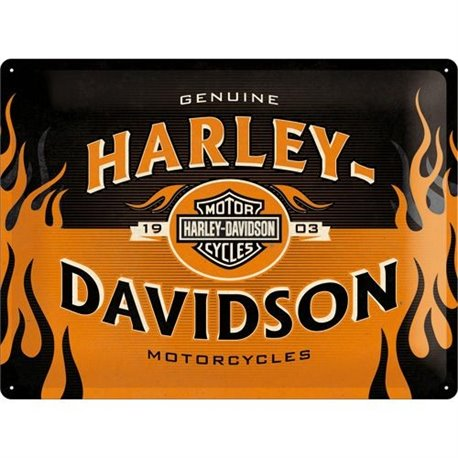 Tin Sign 30x40 H-D 1903 Logo